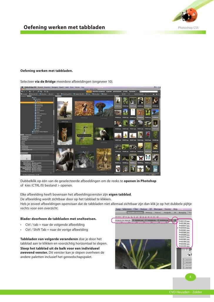 Oefening werken met tabbladen                                                                            Photoshop CS5Oefe...