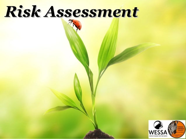 Risk AssessmentRisk Assessment