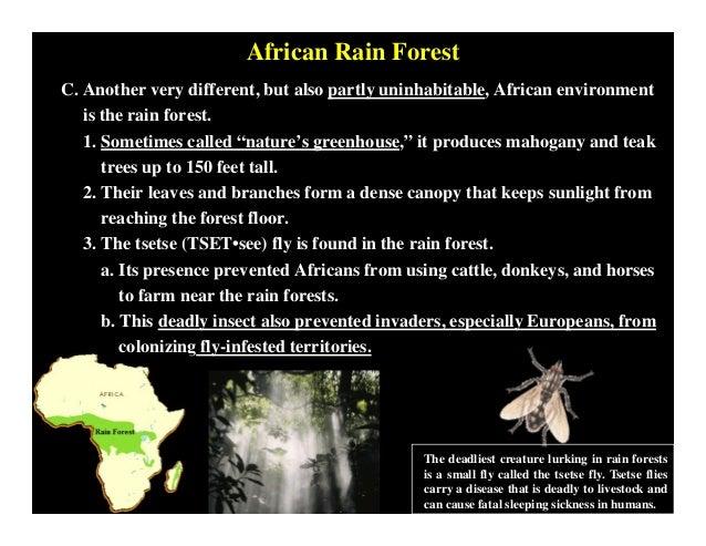 West African Civilizations Pdf