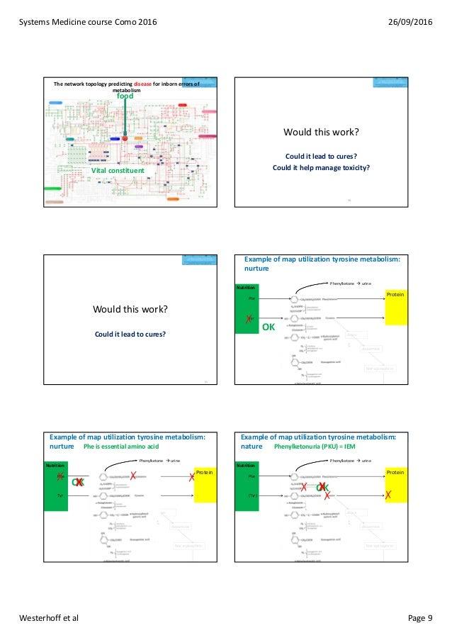 SystemsMedicinecourseComo2016 26/09/2016 Westerhoffetal Page9 Vital constituent food Thenetworktopologypredictin...