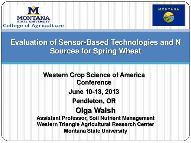 Western Crop Science of America Conference June 10-13, 2013 Pendleton, OR Olga Walsh Assistant Professor, Soil Nutrient Ma...
