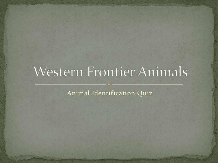 Western Frontier Animals