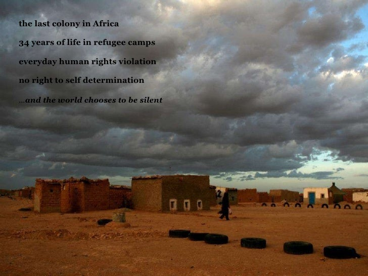 the last colony in Africa  34 years of life in refugee camps  everyday human rights violation  no right to self determi...