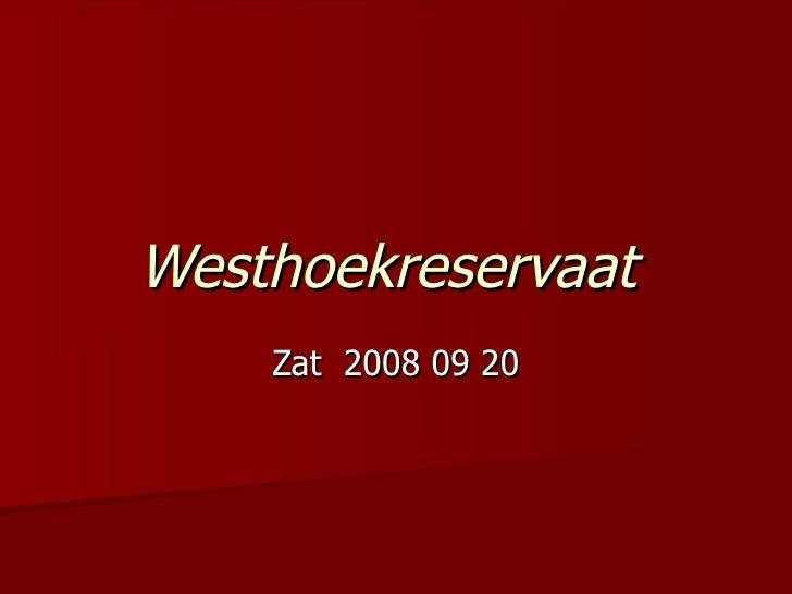 Westhoekreservaat   Zat  2008 09 20