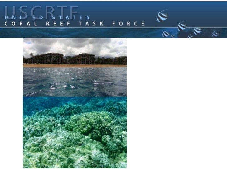 West Maui   Watershed:    Regional ScaleCollaborative Planning      In Hawaii    Beth Dieveney & Kathy Chaston    NOAA CRC...