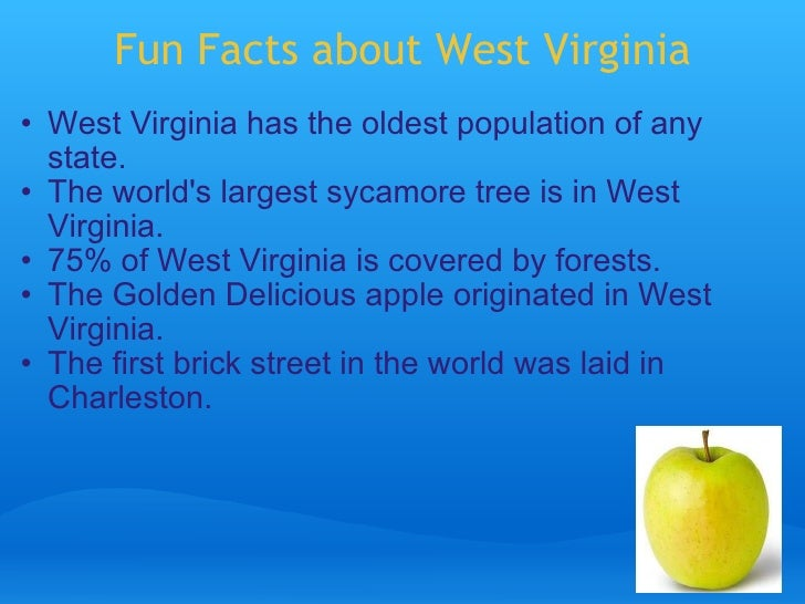 U s state powerpoint for Fun facts about america