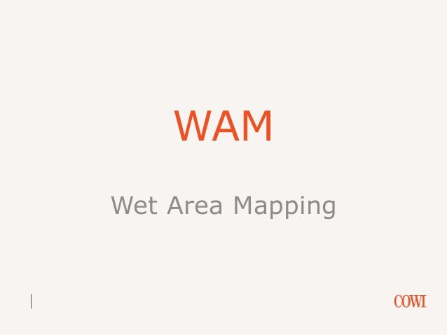 WAM Wet Area Mapping