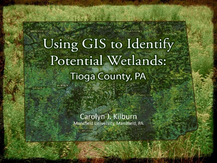 INTRODUCTION:     Determine if GIS can be used to successfully      identify potential wetland mitigation sites in      T...