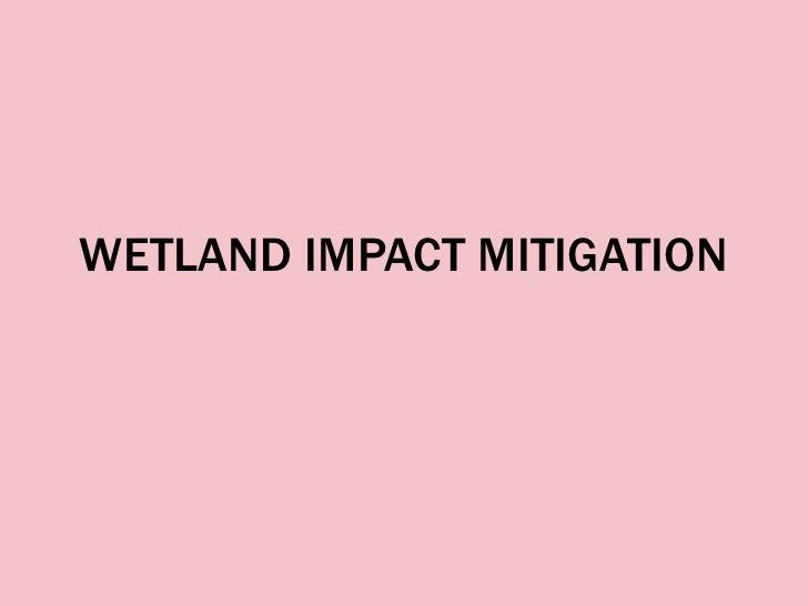 WETLAND IMPACT MITIGATION<br />