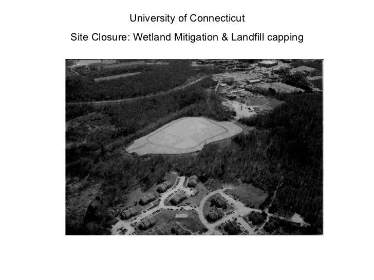 University of Connecticut Site Closure: Wetland Mitigation & Landfill capping