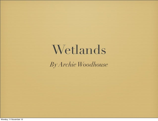 Wetlands By Archie Woodhouse  Monday, 11 November 13