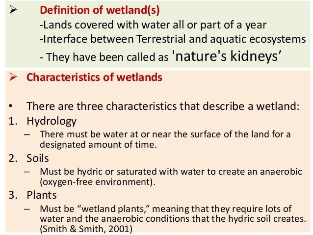 Wetlands bp for Soil characteristics definition