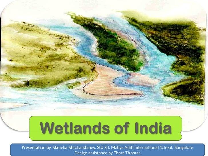 Presentation by Maneka Mirchandaney, Std XII, Mallya Aditi International School, Bangalore                                ...
