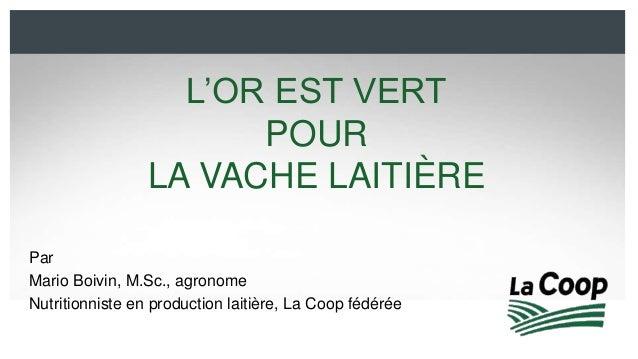 L'OR EST VERT  POUR  LA VACHE LAITIÈRE  Par  Mario Boivin, M.Sc., agronome  Nutritionniste en production laitière, La Coop...