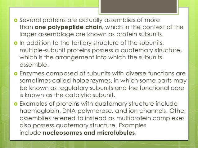 quaternary structure of protein pdf