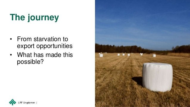 LRF Ungdomen | The journey • From starvation to export opportunities • What has made this possible?