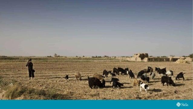 World Food Day 2020 - Swedish FAO Committee