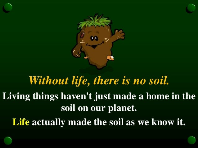Soil fundamentals iys 2015 for Soil our life