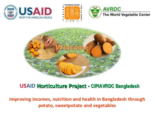 Improving incomes, nutrition and health in Bangladesh throughpotato, sweetpotato and vegetablesUSAID Horticulture Project ...