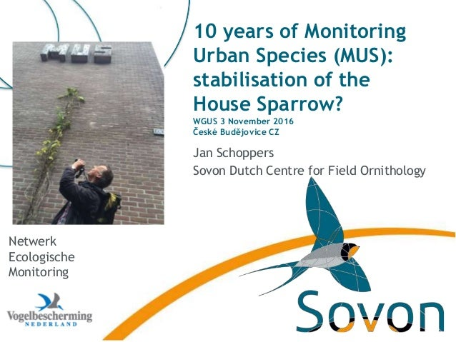 10 years of Monitoring Urban Species (MUS): stabilisation of the House Sparrow? WGUS 3 November 2016 České Budějovice CZ J...