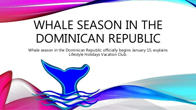 WHALE SEASON IN THE DOMINICAN REPUBLIC Whale season in the Dominican Republic officially begins January 15, explains Lifes...