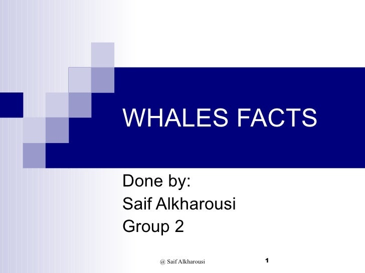 WHALES FACTS Done by: Saif Alkharousi Group 2