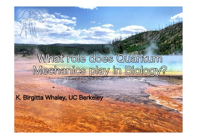 What role does Quantum Mechanics play in Biology? K. Birgitta Whaley, UC Berkeley