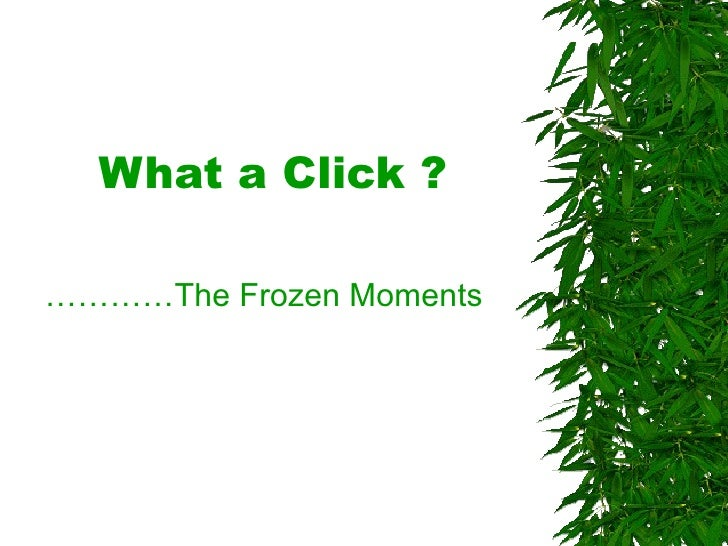 What a Click ? ………… The Frozen Moments
