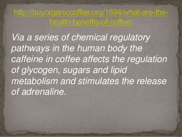 Via a series of chemical regulatory pathways in the human body the caffeine in coffee affects the regulation of glycogen, ...