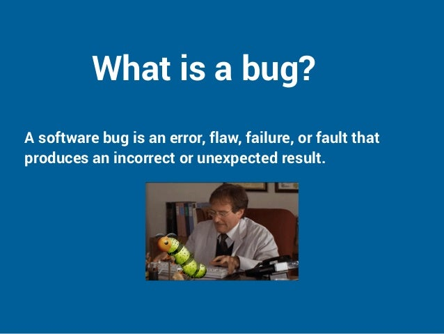what is bug report
