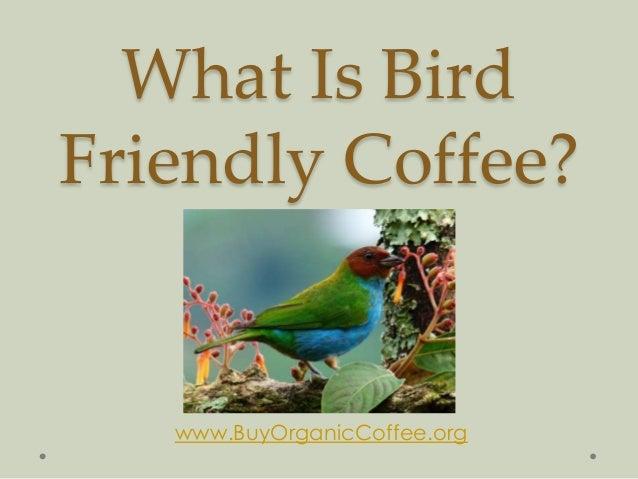What Is Bird Friendly Coffee? By www.BuyOrganicCoffee.org