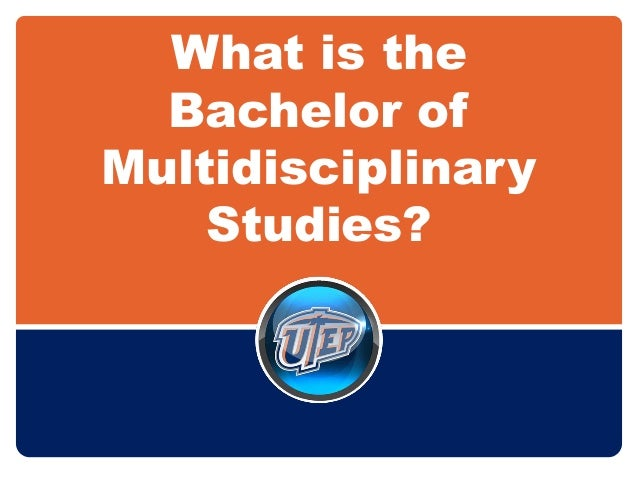 What is the Bachelor of Multidisciplinary Studies?