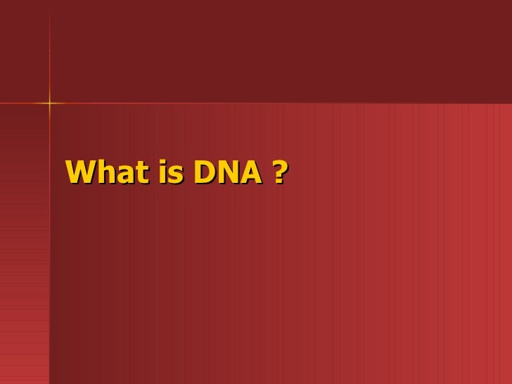 What is DNA ?