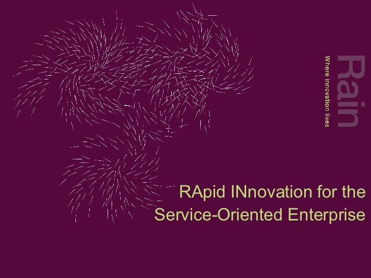 RApid INnovation for the Service-Oriented Enterprise