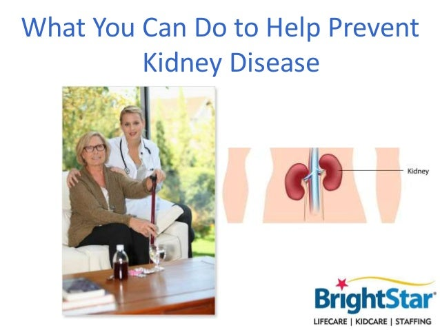 What You Can Do to Help Prevent Kidney Disease