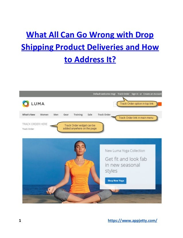 What All Can Go Wrong with Drop Shipping Product Deliveries and How to Address It? 1 https://www.appjetty.com/
