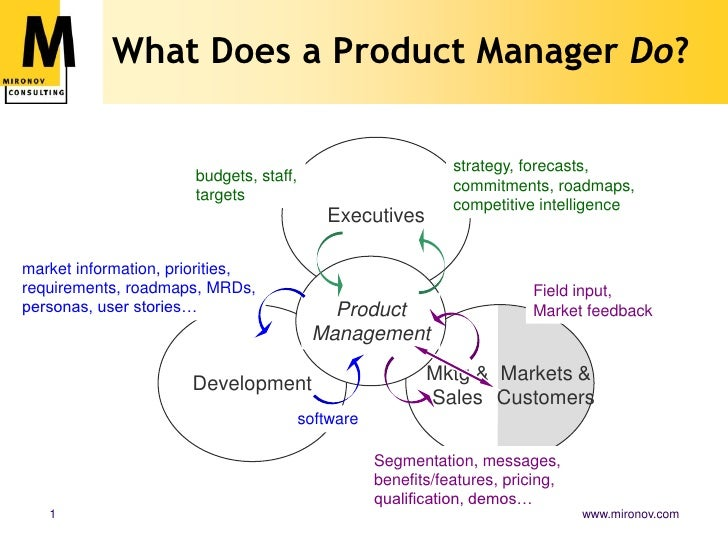 Product<br />Management<br />Executives<br />Development<br />What Does a Product Manager Do?<br />strategy, forecasts, co...