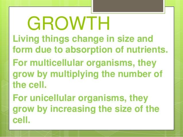Organism 8 Growth Living