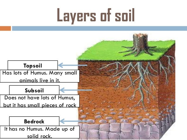 What are some types of soil for What are the different layers of soil