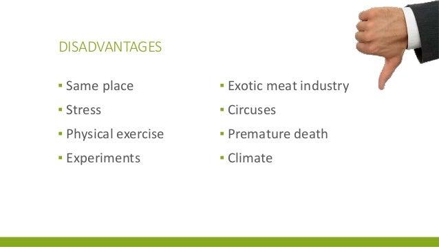 Advantage ang disadvantage of animals in