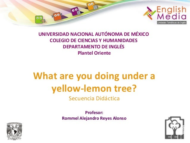 UNIVERSIDAD NACIONAL AUTÓNOMA DE MÉXICO COLEGIO DE CIENCIAS Y HUMANIDADES DEPARTAMENTO DE INGLÉS Plantel Oriente What are ...