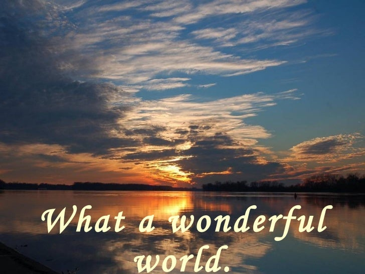 what a wonderful world essay Discover the wonderful world of plants the world would be a poor place without  plants they feed us, keep us warm and dry, clean our air and provide us with.