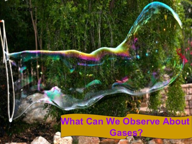 1st Grade            What Can We Observe About                     Gases?