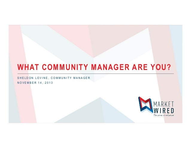 WHAT COMMUNITY MANAGER ARE YOU? SHELDON LEVINE, COMMUNITY MANAGER NOVEMBER 14, 2013
