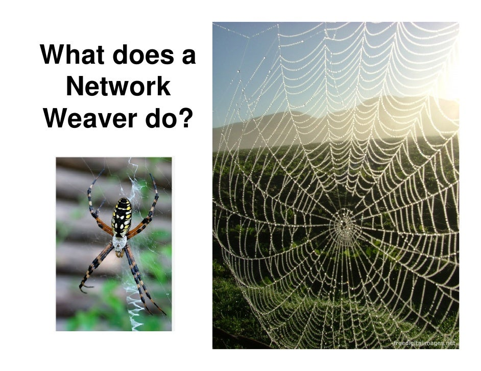 What does a  Network Weaver do?