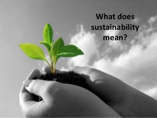 What does sustainability mean?