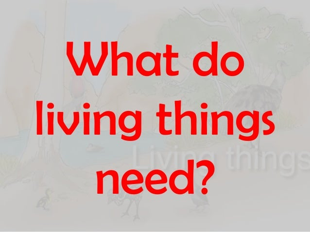 What do living things need to survive for Home need things