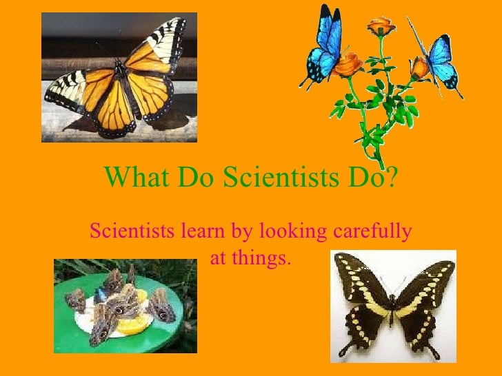 what do biologist do A wildlife biologists works close to animals at all times so, what does a wildlife biologist do head inside and go through a list of their job duties.