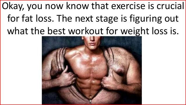 Eat plan to lose weight photo 3