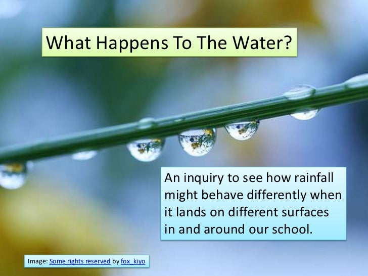 What Happens To The Water?                                          An inquiry to see how rainfall                        ...